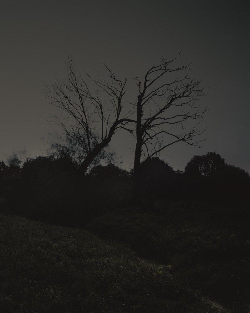 """Ein Bild aus dem Bildband """"Internalized Kami"""" von Thomas Bergner."""
