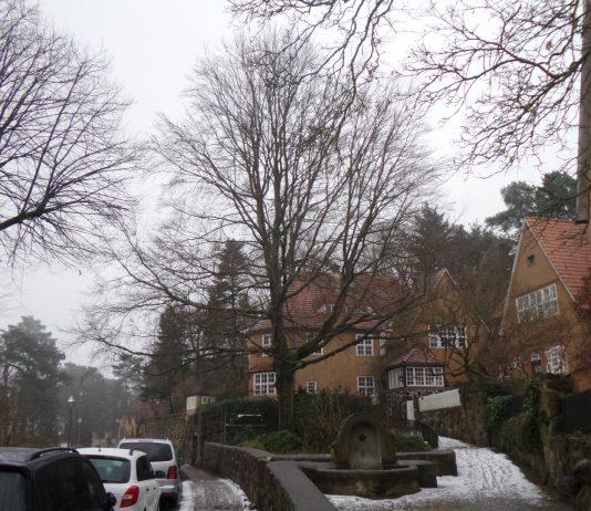 Drei Häuser des Architekten Heinrich Straumer in Berlin-Frohnau.