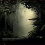 """Bild aus der VR-Installation Inside Tumucumaque """"Waldlichtung im brasilianischen Regenwald"""""""