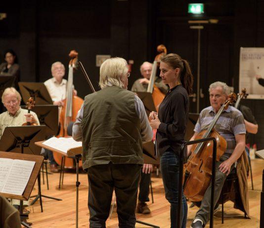 Kritisches Orchester 2017.