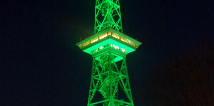 Es grünt so grün… – Internationale Grüne Woche und Green-Me-Filmfestival lassen Berlin erstrahlen