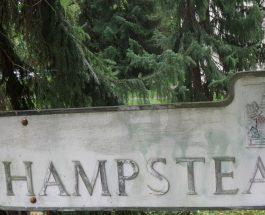 Wohin zum Wochenende? Gehen wir doch in den Hampstead Park! Im neuen Film erkämpft sich der brillante Brendan Gleeson sein Recht auf Wohnen und Leben, Diane Keaton hilft und wird belohnt