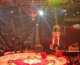 Menschen und Sensationen im Roncalli Weihnachtszirkus
