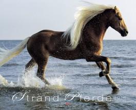 """Pferde in Freiheit – Annotation zum 2016er Kalender """"Strandpferde"""""""