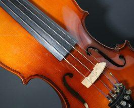 Violinvirtuose Walter Levin ist tot